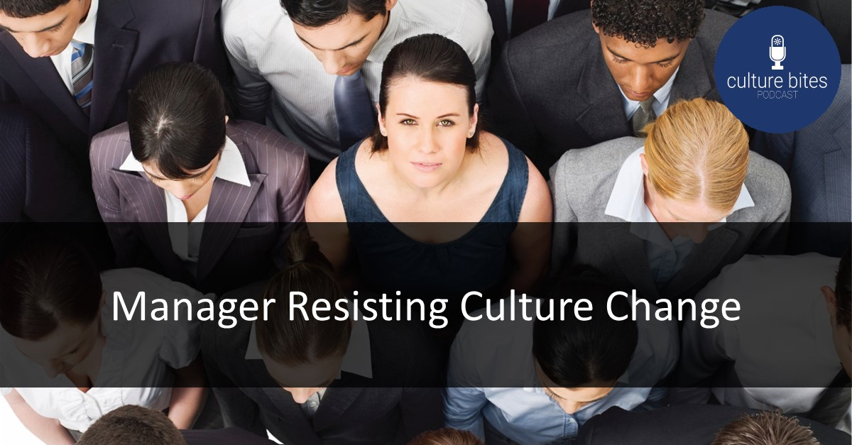 009 - Manager Resisting Culture Change
